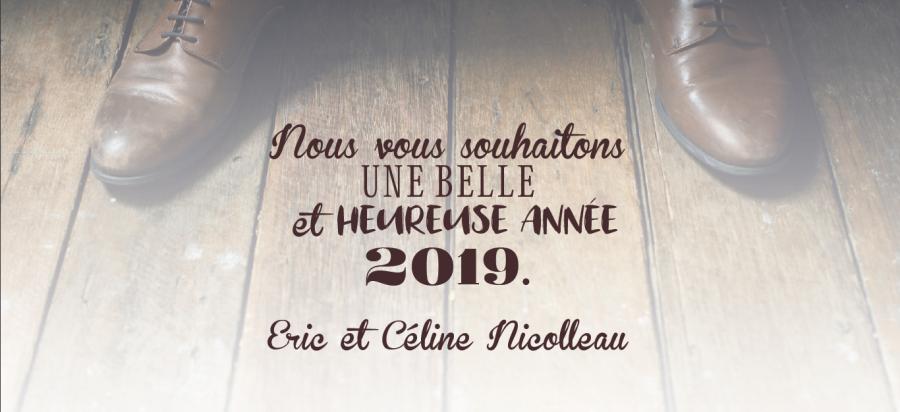 NOUS VOUS SOUHAITONS UNE EXCELENTE ANNEE 2019
